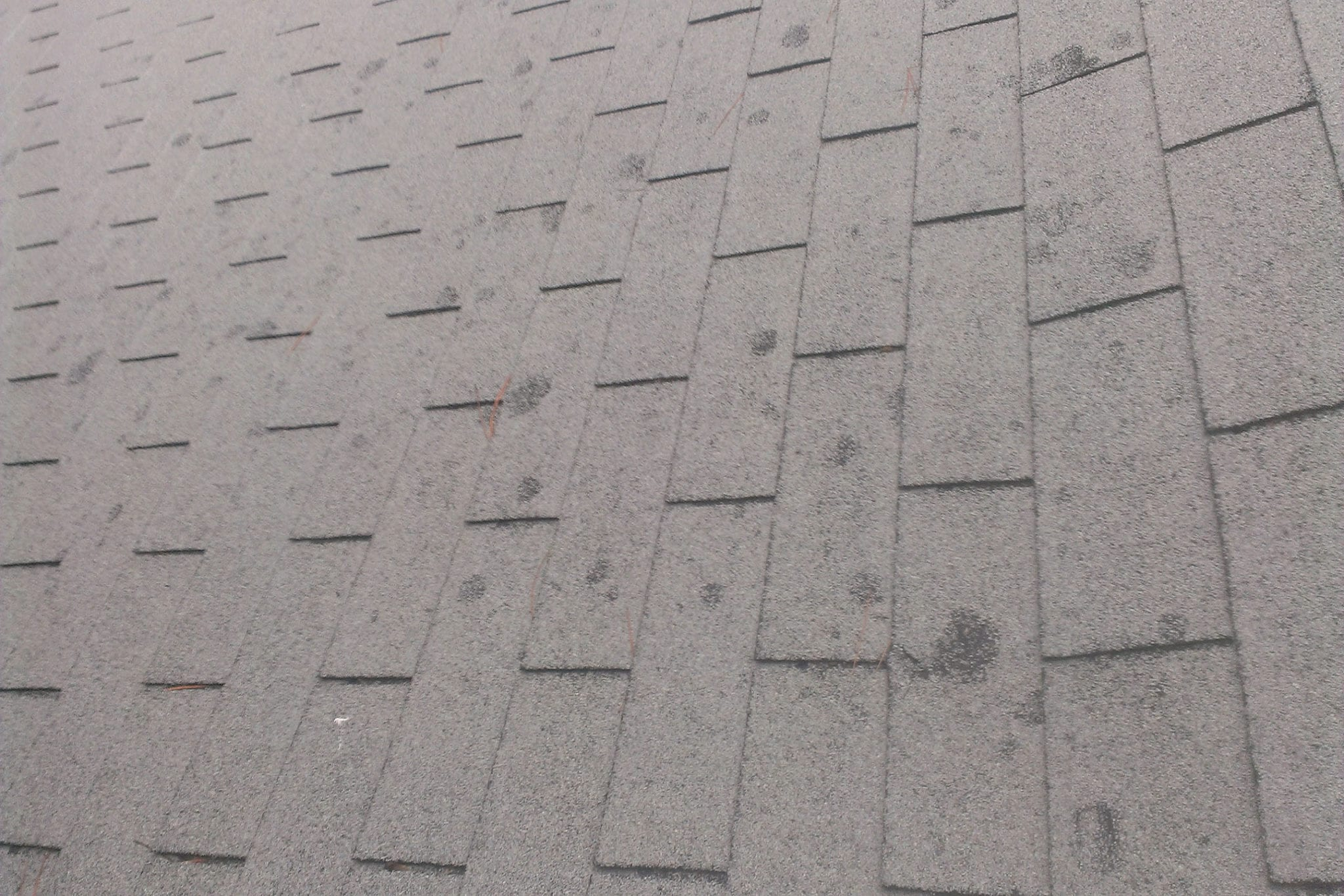 Cleaning Lichen From Roof Shingles 12300 About Roof – Lichen Removal From Roof Shingles